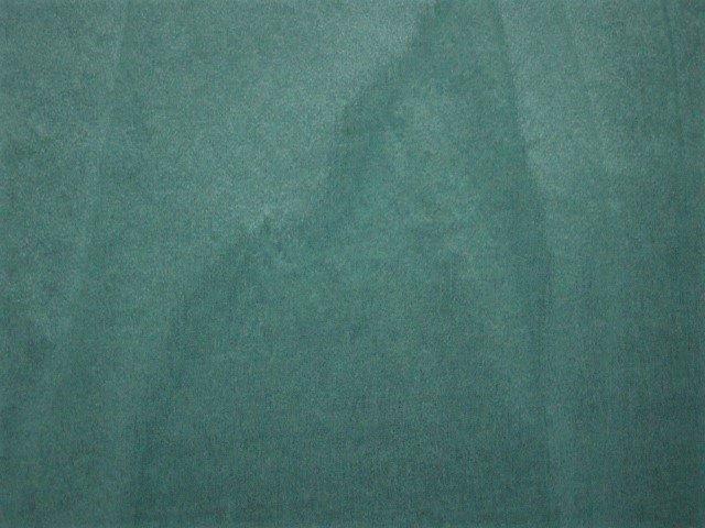 Blue Tulip 2005