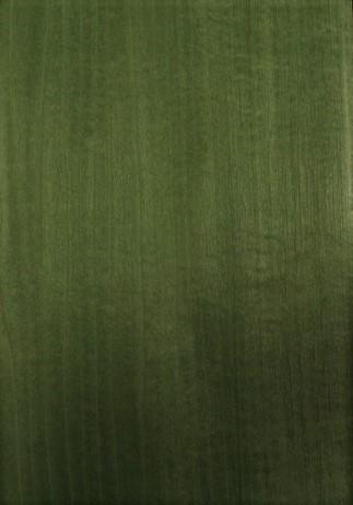 Green Tulip 1020