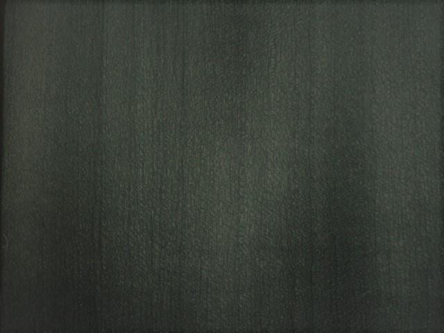 Grey Tulip 3015